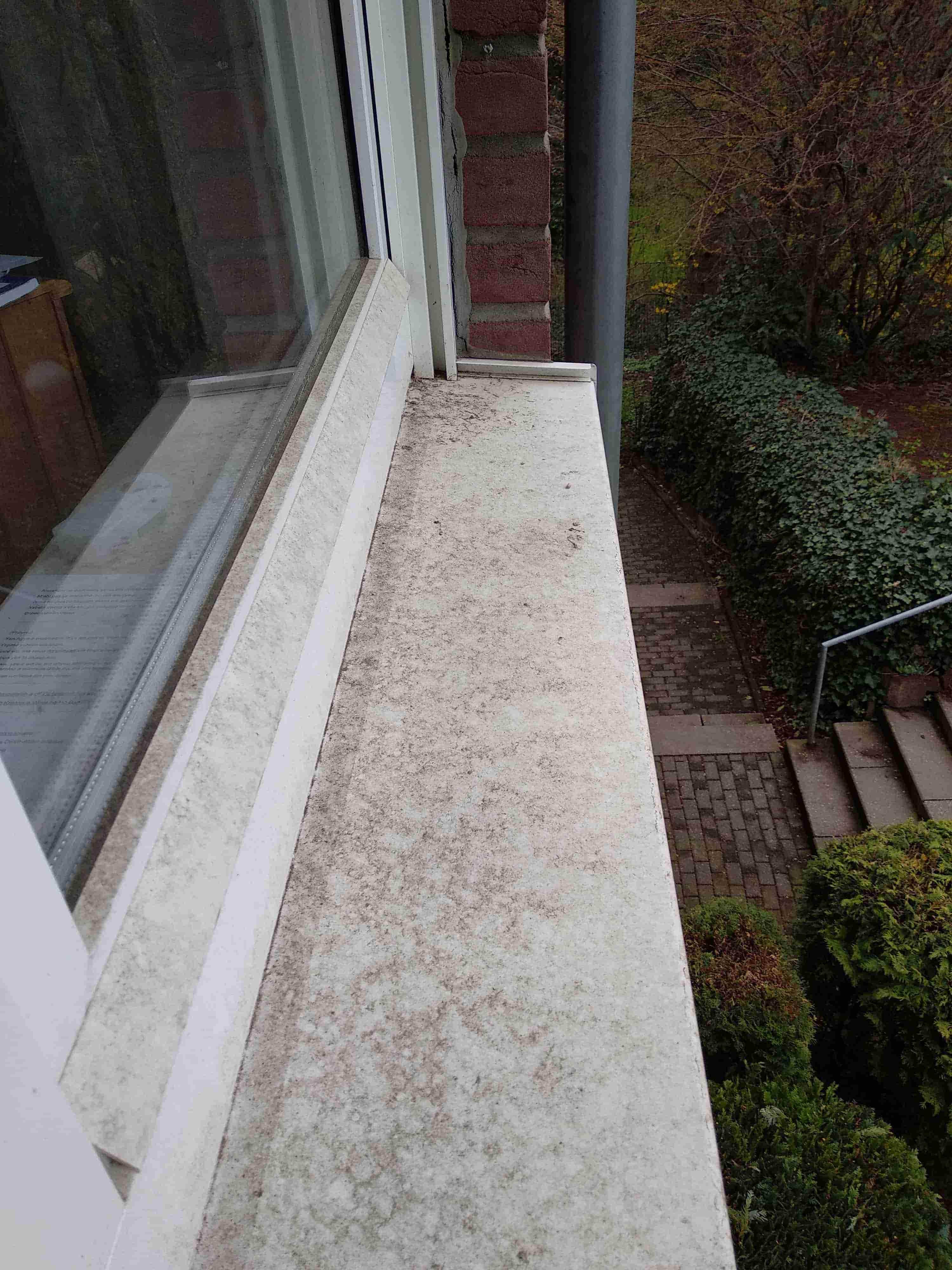 Reinigung von verdrecktem Fenster in Dortmund