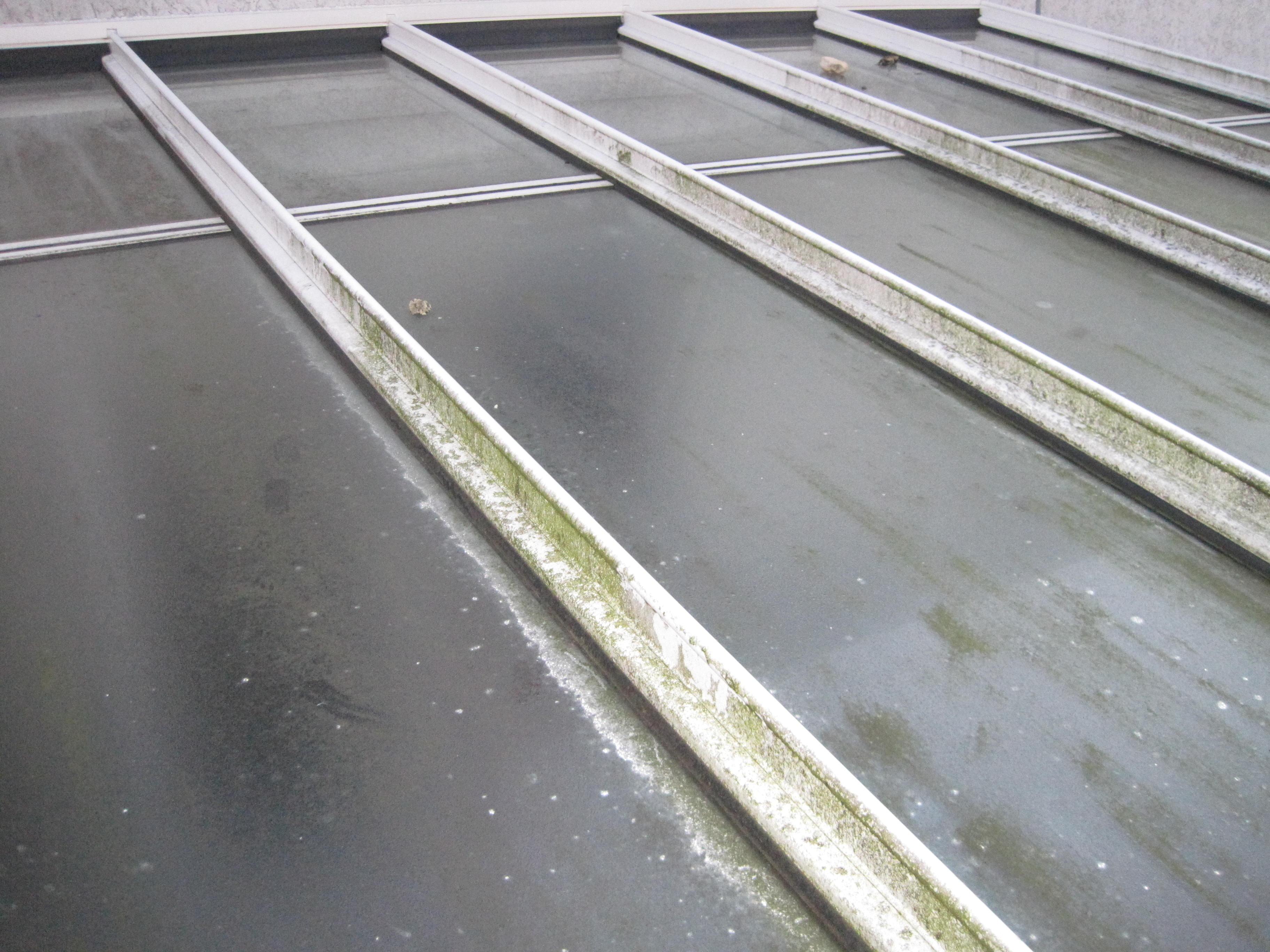Wintergarten Glasreinigung mit Rahmen Fensterreinigung Glasdachreinigung