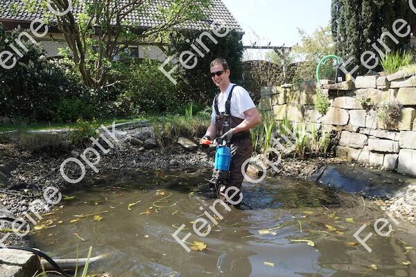 Teichreinigung mit Fischen Schlammabsaugung