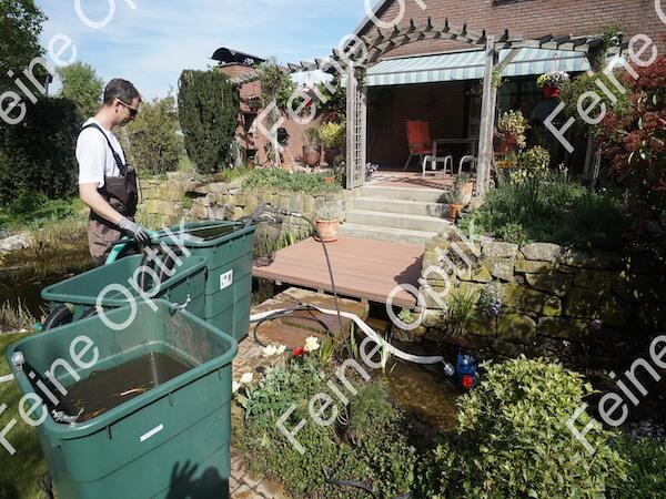 Gartenteichreinigung Schlammentfernung Teichabsuagung Unna